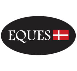 T.1 - EQUES